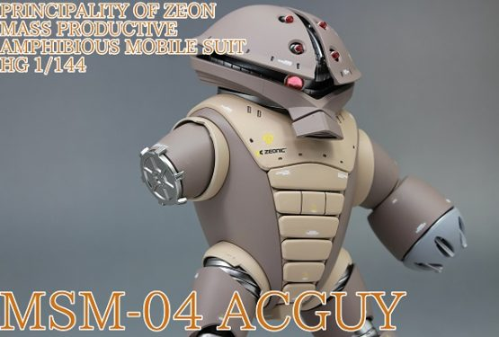 HGUC アッガイ MSM-04 ACGUY 改修全塗装完成品